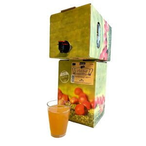 Apfelsaft naturtrüb, Demeter 5 Liter 100% Direktsaft-Camphill Werkstätten Steinfurt-werky